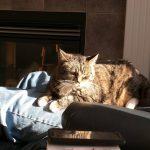 Someone found herself a premium sunbeam. #vacation